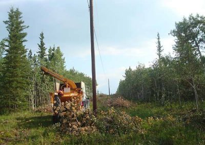 Chipping – Hydro line, Deep Creek, Whitehorse, YT