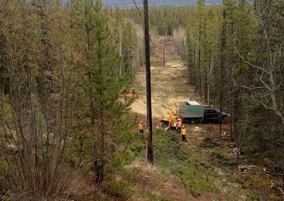Chipping – Hydro line right of way, MT Mac, Whitehorse, YT
