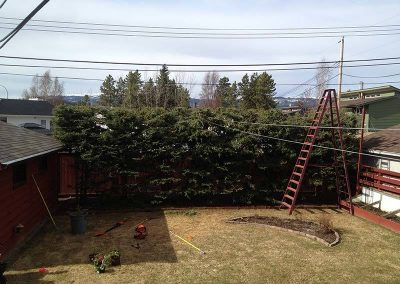 Hedge trimming – Riverdale, Whitehorse, YT
