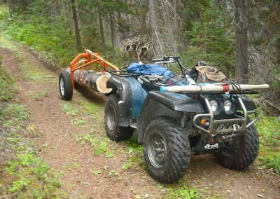 Selective logging – Wann River, BC