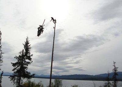Tree removal – #2 Marsh Lake, YT