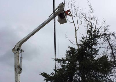 Tree removal – Hydro line, Bucket truck, Whitehorse, YT